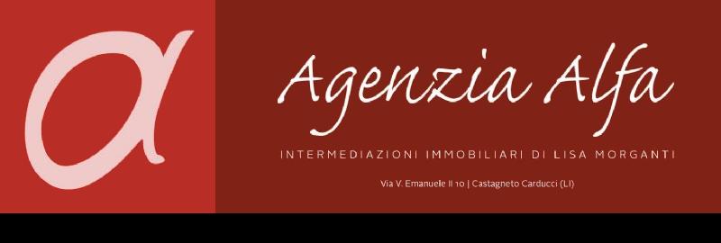 Agenzia Alfa di Lisa Morganti