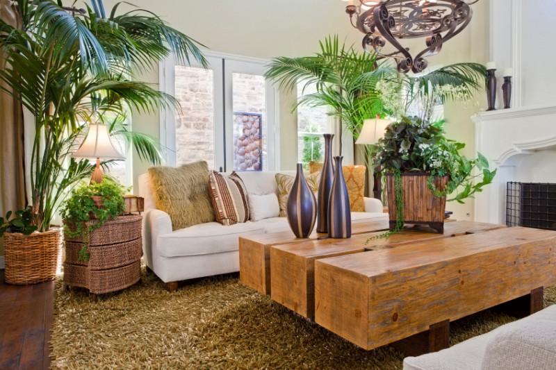 Piante da interno l 39 arredamento in verde properties for Arredare casa con le piante