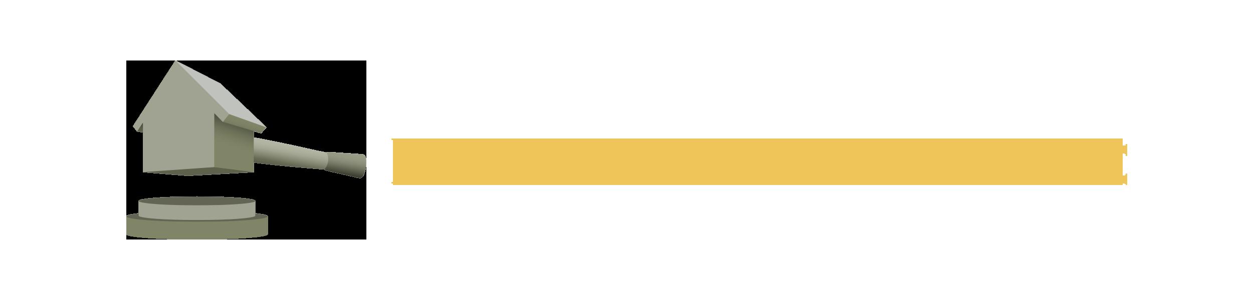 Professione Aste