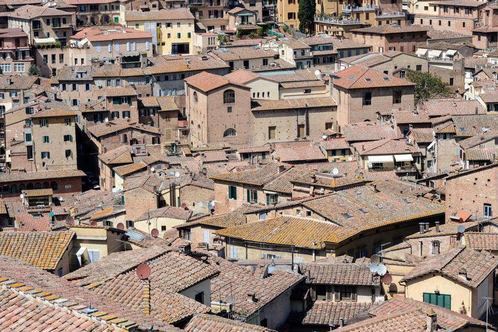 Contributo affitti Siena